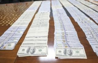 Dolandırıcılara bir milyon lira kaptırdılar