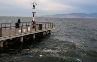 İzmir Körfezi'nde analiz sonuçları korkuttu