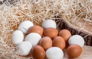 1 aylık yumurta stoğu kaldı