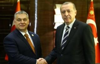 Erdoğan'dan kayıp gazeteciyle ilgili yeni açıklama