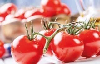 Eylül ayının şampiyonu domates