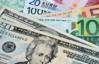 Dolar ve Euro'da son durum / 11 Ocak