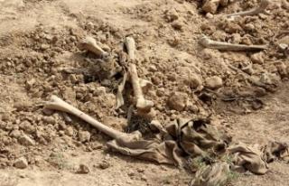 Irak'ta polislerin de olduğu toplu mezar bulundu