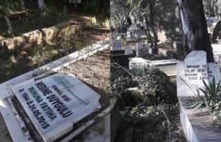 Adana'da esrarengiz olay! Mezarları tahrip ettiler