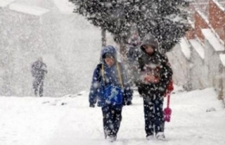 Bitlis'ten kar tatili haberi