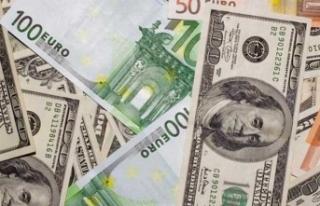 Dolar bu ay ilk kez düştü