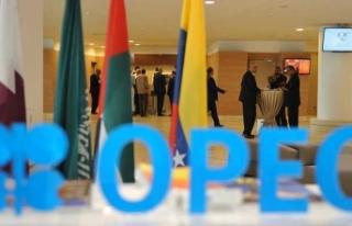 Rusya'dan OPEC açıklaması!