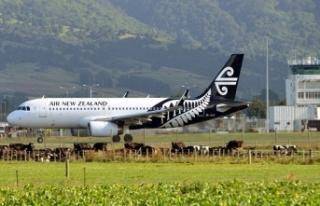 Son dakika! Yeni Zelanda'da alarm, uçuşlar...