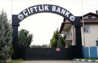 'Çiftlik Bank' davasnda 24 sanığın savunmaları...