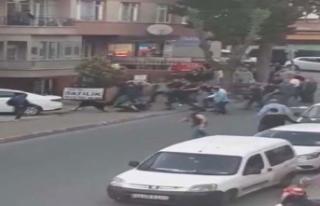 İstanbul'da Rottweiler dehşeti! Yaralılar...