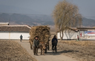 Kuzey Kore alarm veriyor! Son 40 yılın en kötüsü…