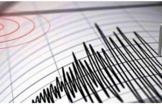 Marmara Denizi'nde korkutan depremler