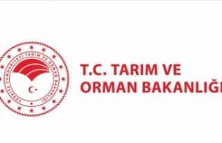 Tarım ve Orman Bakanlığından İstanbul'daki...