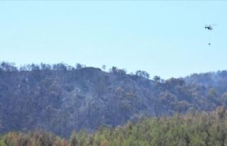 Fethiye'ye sıçrayan orman yangını söndürüldü