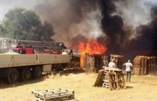 Manisa'da büyük yangın