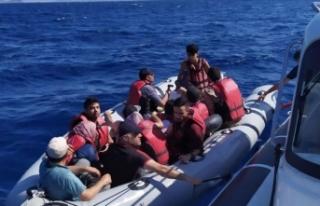 Muğla'da 11 düzensiz göçmen yakalandı