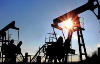IMF 2021 petrol fiyat tahminini açıkladı
