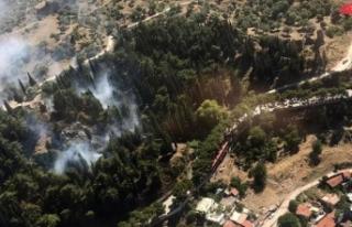 Manisa'da Spil Dağı eteklerinde orman yangını