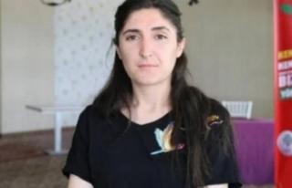 HDP'li başkana terör gözaltısı!
