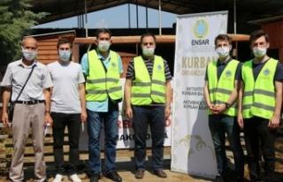 Türk kurumlarından Kuzey Makedonya'da kurban kesimi