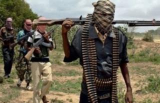 Yüzlerce Boko Haram üyesi serbest bırakıldı