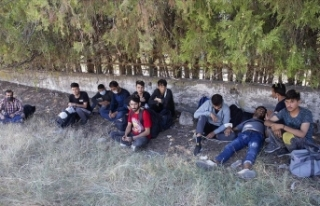 Edirne'de sınırda 11 sığınmacı yakalandı