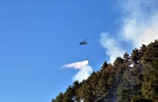 Kahramanmaraş'ta çıkan orman yangınına havadan...