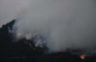 Manisa'daki orman yangını kısmen kontrol altına...