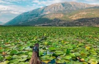 Nilüferleriyle ünlü göl doğal güzellikleriyle...