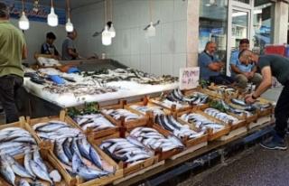 Bereketli geçen sezon balıkçıları mutlu ediyor