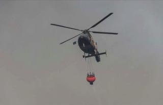 Brezilya'daki yangınlarda yaklaşık 1,5 milyon...