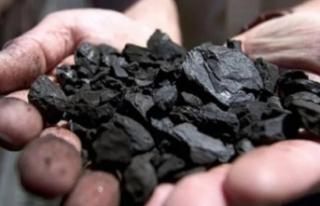 'Kara elmas' 900 bin lira gelir sağladı!