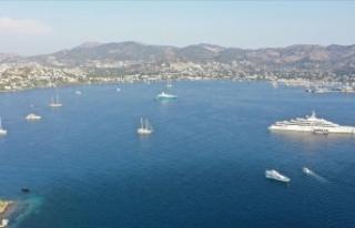 Mavi suların 'milyon dolarlık misafirleri'...