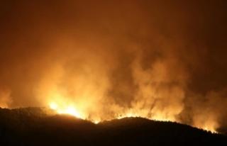 Orman yangınına havadan müdahaleye yeniden başlandı