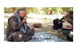 PKK'lı teröristler arasında kaos çıktı!...