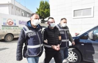528 personelle organize suç örgütüne operasyon:...