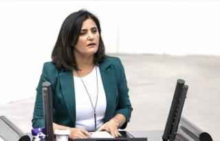 'Dirayet Dilan Taşdemir HDP içerisinde PKK...