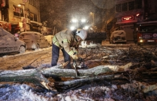 İstanbul'da kar yağışı: Ağaçlar devrildi,...