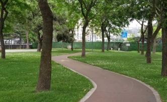 Baygın halde bulundu! Şişli'de parkta cinsel saldırı iddiası