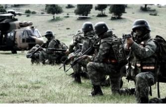 2 YPG'li daha Türkiye'ye getirildi