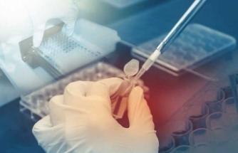 Google yapay zeka ile kanser teşhisinde doktorların önüne geçti