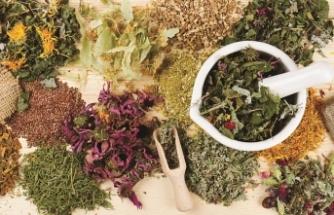 Sağlık Bakanlığı'ndan bitkisel ilaç düzenlemesi