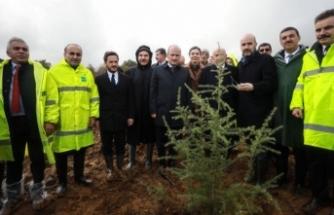 ''8 yılda 10 milyon ağaç dikilecek''