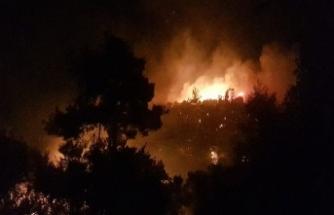 Antalya'da orman yangını 4 mahalleyi sardı