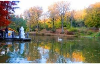 Atatürk Arboretumu nerede, nasıl gidilir, giriş ücreti ne kadar
