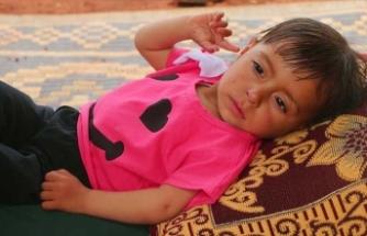 1,5 yaşındaki Aye'nin yaşaması acil ameliyata bağlı