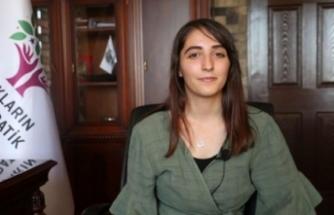 Flaş gelişme: Erbil'deki saldırının faili HDP'li milletvekilinin ağabeyi çıktı!