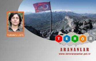 PKK'ya ağır darbe! Sözde yönetici kadrosundaydı, öldürüldü