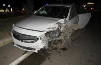 Afyonkarahisar'da zincirleme kaza: 1 ölü, 2 yaralı