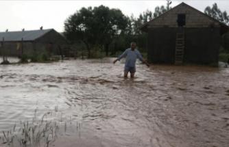 Ağrı'da sağanak nedeniyle bazı evleri ve tarım arazilerini su bastı